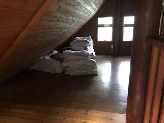 コテージ森林村の布団